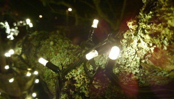 belysning2-610x350